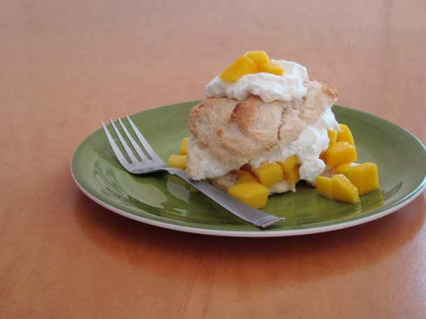 Mango Shortcakes with 1800 Coconut Tequila Whipped Cream - perfect for summer BBQs!